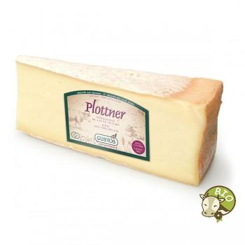 Plottner Käse nach Art des Fontin
