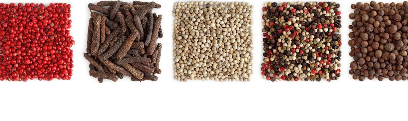 Nudelsaucen, Gewürze und Kräuter, Ragouts: Bring mehr Pep in deine Küche!